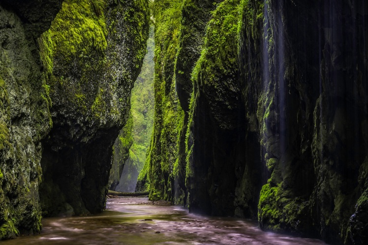 Oneonta Rains - Columbia River Gorge - Landscape Photography